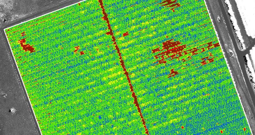 Imagen NDVI usada para agricultura de precisión